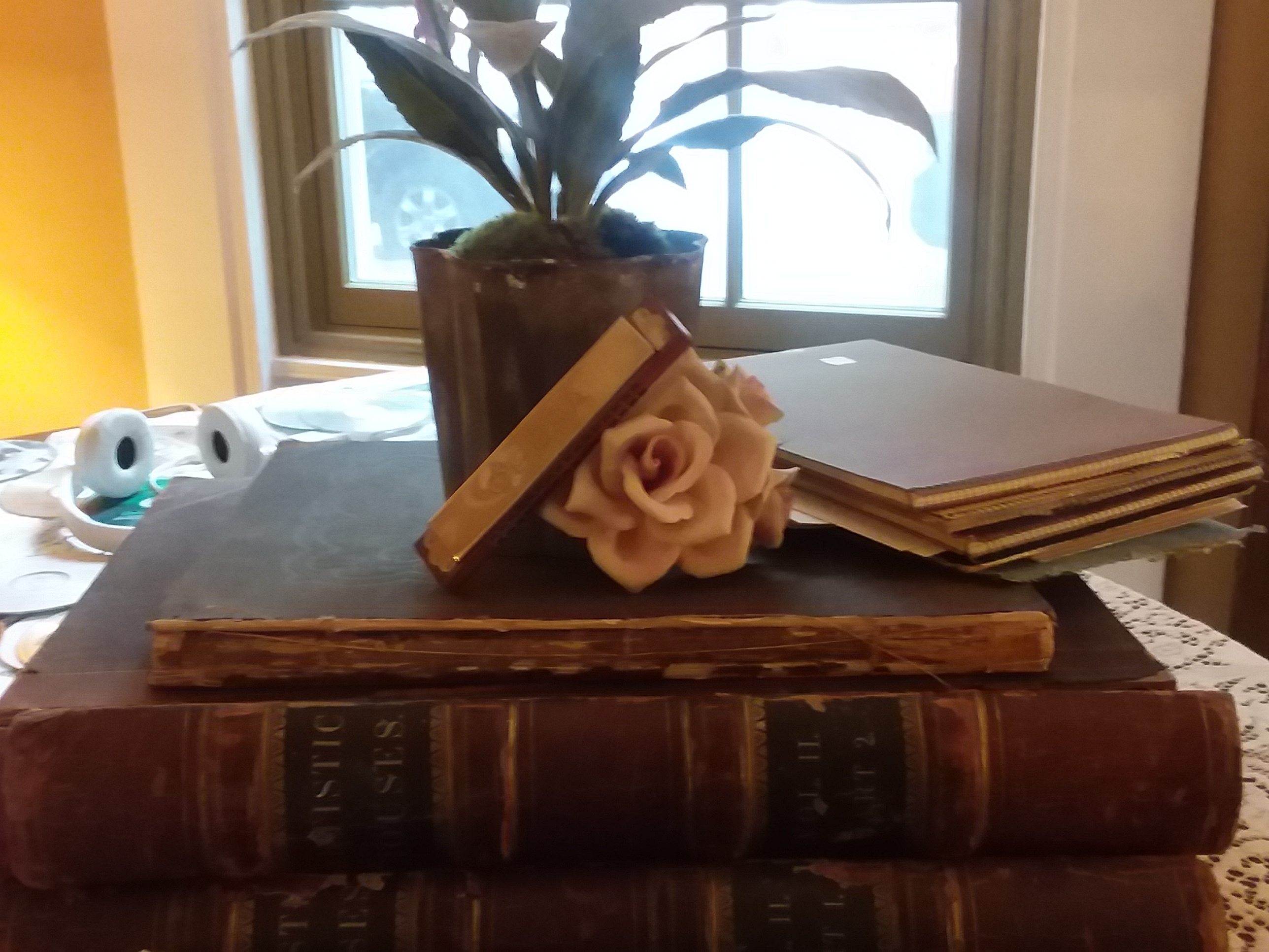 Rose and  Books.jpg
